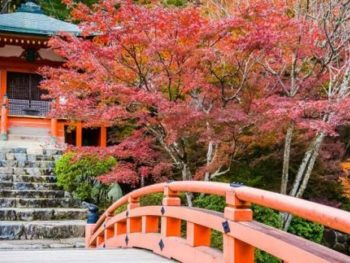 Red Daigoji temple in Japan set against the trees with red and green leaves and in front of an orange-red bridge.