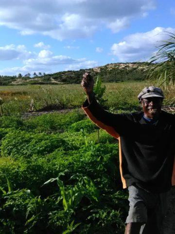 Mr Igreja standing in front of his farmland